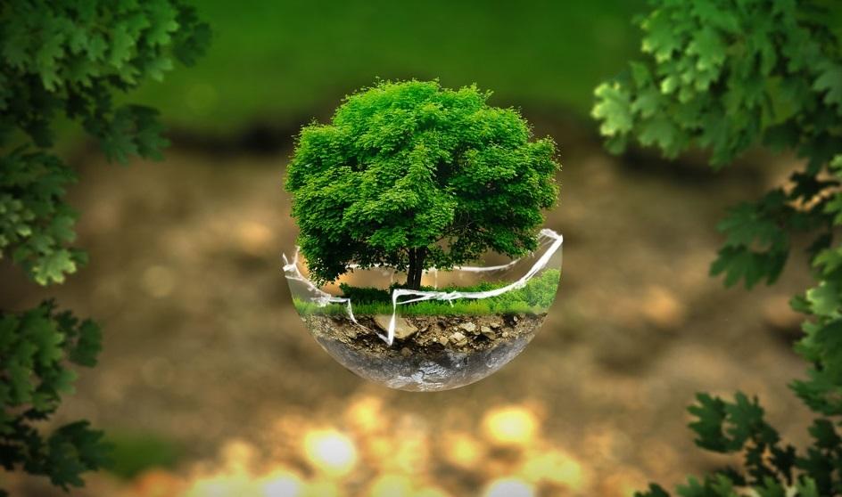 El fenómeno de los préstamos verdes sigue creciendo