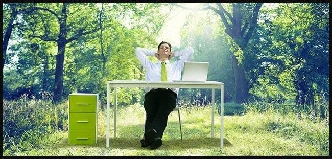 ¿Qué ofertas de trabajo de medio ambiente son las más solicitadas?