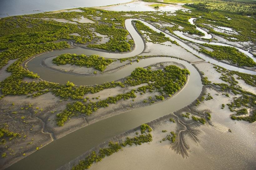 Convenio de Ramsar: ¿qué es y qué funciones tiene?