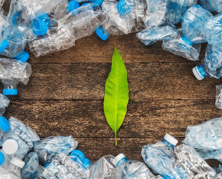 El reciclaje como fuente de empleo, riqueza y futuro en España